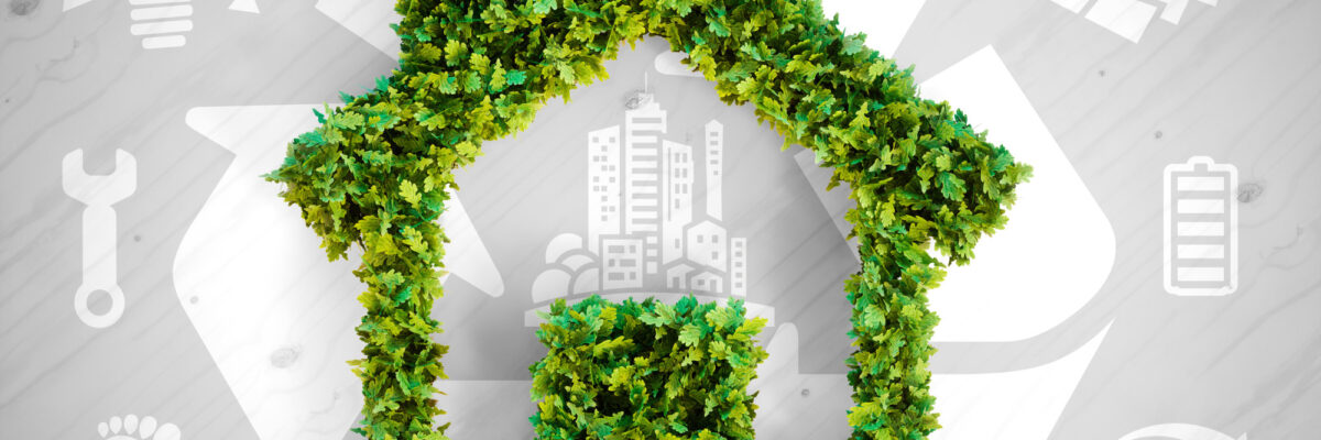 Eco-Friendly Living: A Homeowner's Guide to Sustainable Home Design