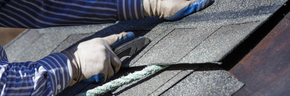 5 Important Roof Maintenance Tips for Homeowners