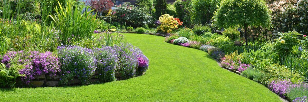 3 Pro Tips for Making a Beautiful Backyard Landscape